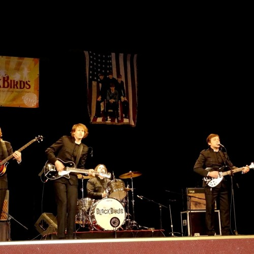 Best Of Live Beatles Show